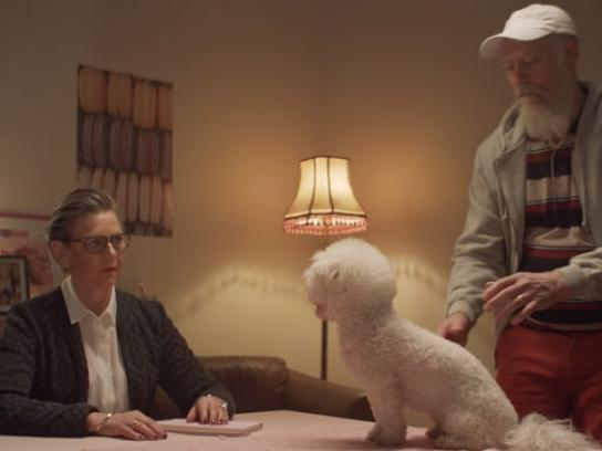 Credable Film Ad - The Dog