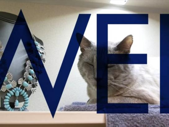 Goodwill Ambient Ad - Purrfect Pairs
