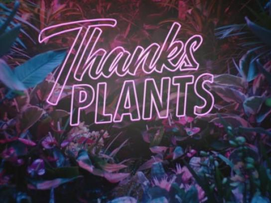Flower Council of Holland Film Ad - Thanks Plants