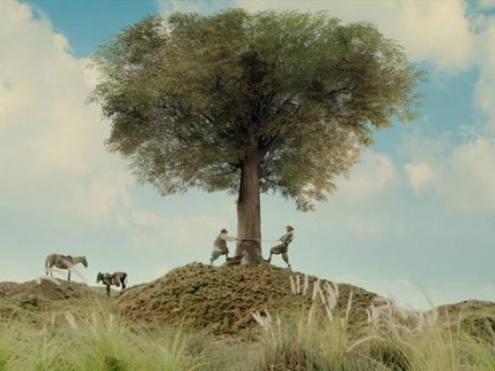 Libreria Norma Film Ad -  Don Quijote De La Mancha