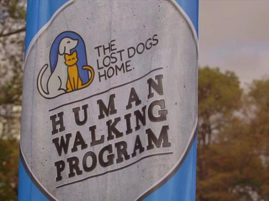 The Lost Dogs Home Ambient Ad -  The human walking program
