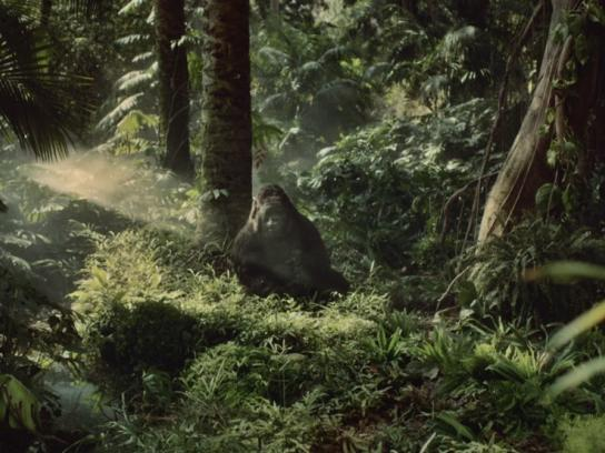 Novartis Film Ad -  Gorilla