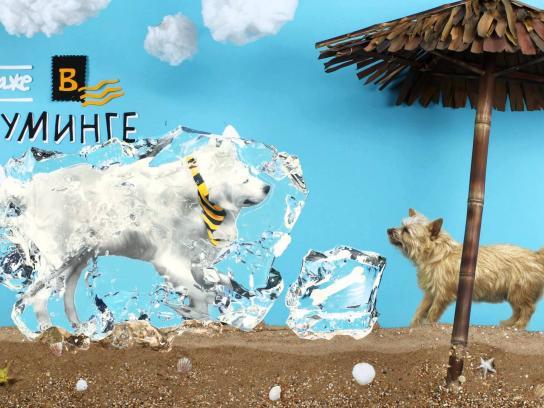 Beeline Film Ad -  Beeline Tricky Dog