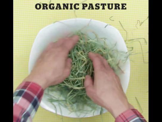 Stubborn Farmer Film Ad - Superfood Bowl - Pigs