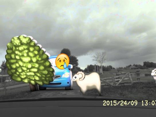 Ditzo Digital Ad -  Sheep vs. BMW