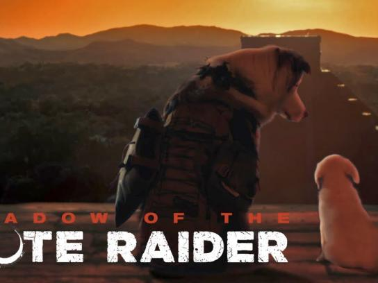 Tomb Raider Film Ad - Shadow of the Cute Raider