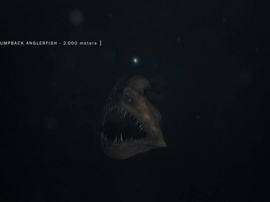 Revista Veja Film Ad - Fish