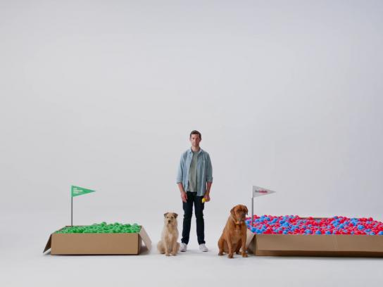 Pet Supplies Plus Film Ad - Big box vs. Small box