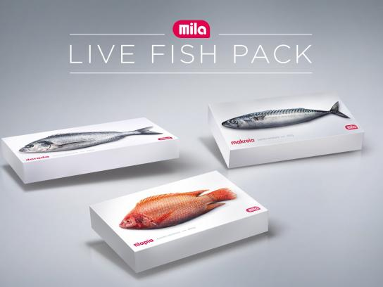 Mila Ambient Ad - The Live Fish Pack