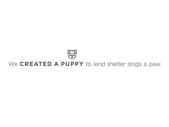 Dallas Pets Alive Digital Ad - Lola the Mutt