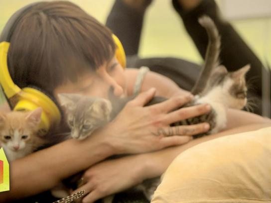 Purina Ambient Ad -  Kitten therapy
