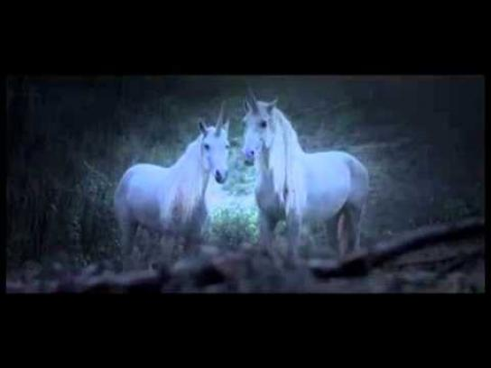 Canal+ Film Ad -  Unicorns