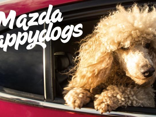 Mazda Ambient Ad -  Happy dogs