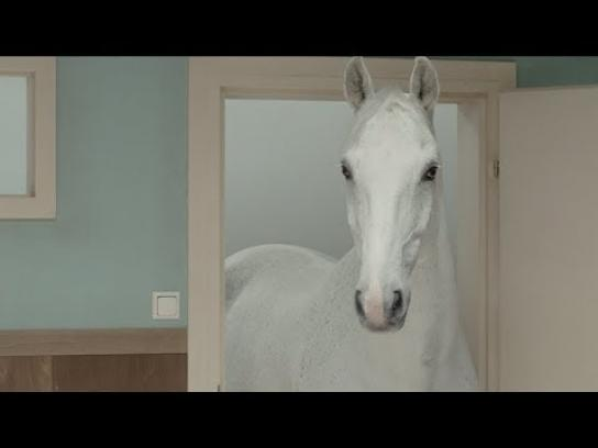 HorseBox Brewery Film Ad - Black Stallion