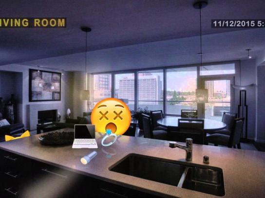 Ditzo Digital Ad -  Burglar, beware of the cat
