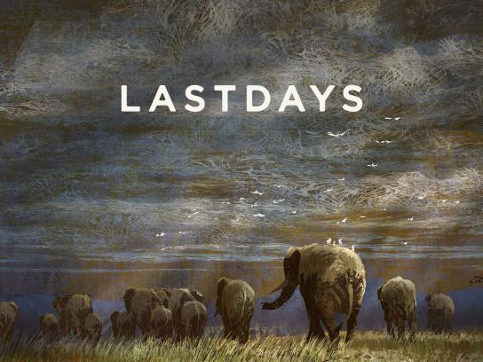 WildAid Digital Ad -  Last Days