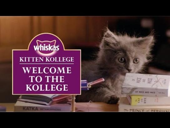 Whiskas Digital Ad -  Kitten Kollege - Welcome