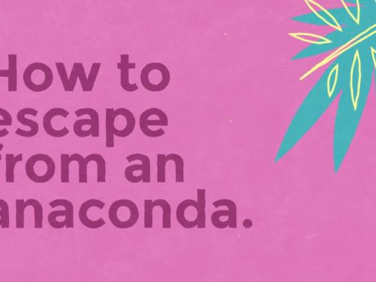 Mount Pleasant Group Digital Ad - How to escape from an anaconda
