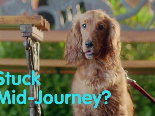 Reliance General Insurance Digital Ad - Dogs in Love