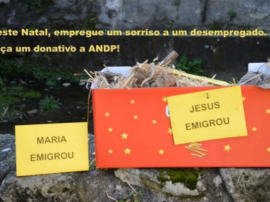 ANDP Digital Ad -  Make a donation