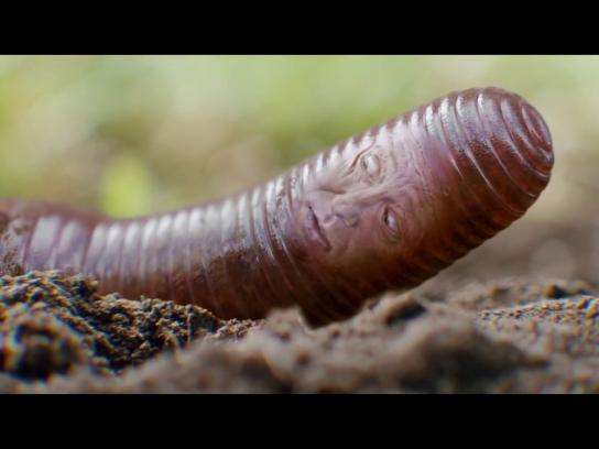 Credit Karma Film Ad - Worm