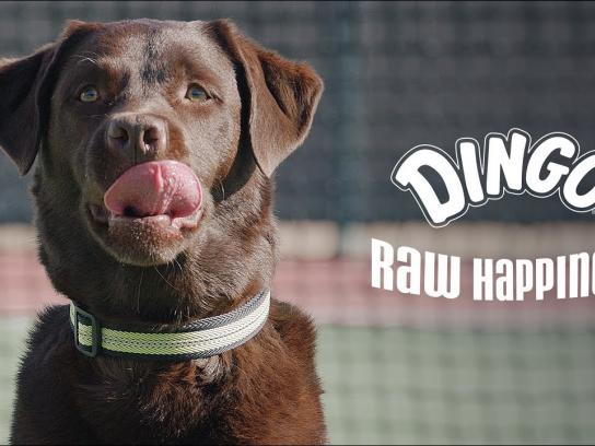 Dingo Rawhides Film Ad - Raw Happiness Films, Tennis