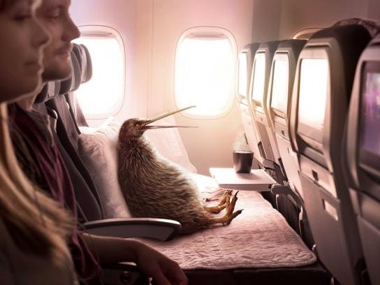 Air New Zealand Film Ad - Pete's discovered a Better Way to Fly with Air New Zealand