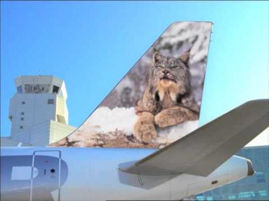 Frontier Airlines Film Ad -  Vacation