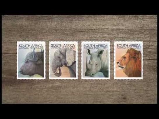 The Rhino Stamp Project