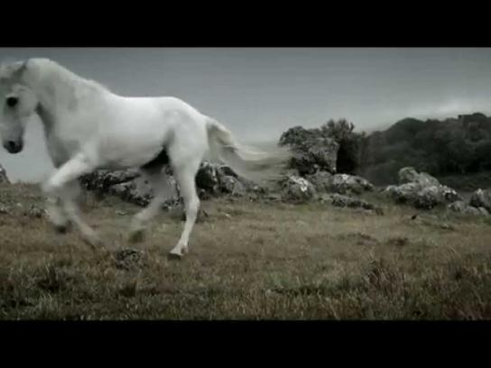 White Horse Film Ad -  Man's nature
