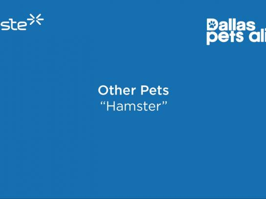 Dallas Pets Alive Audio Ad - Hamster