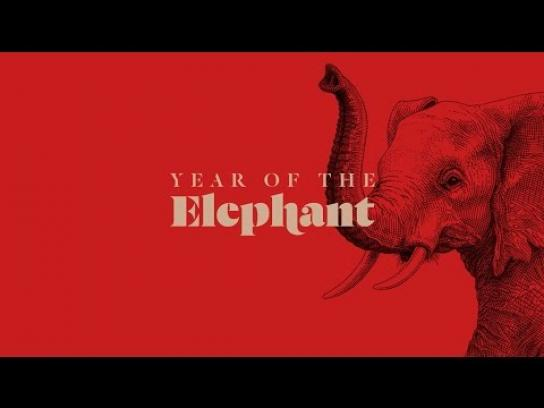 WildAid Digital Ad -  Year of the Elephant