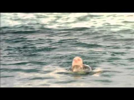 League against cancer Film Ad -  Jaws