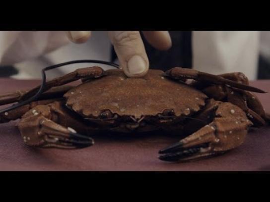 FullSIX Digital Ad -  Christmas carol played on food