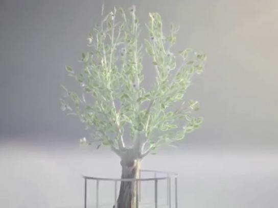 9/11 Memorial & Museum Film Ad -  Survivor Tree