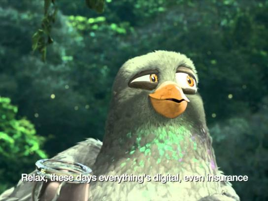 Direct Insurance Film Ad -  The pigeons in Brazil