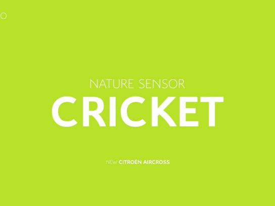 Citroën Audio Ad - Cricket