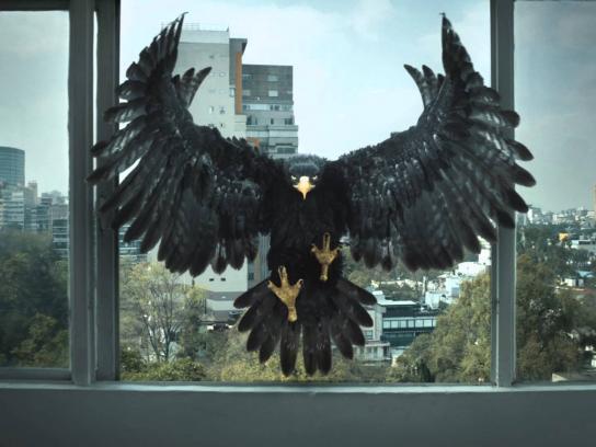 Tecate Film Ad -  Born Bold - Apartment
