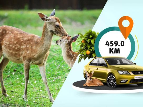 Seat Digital Ad -  Kilometers left until your summer holiday