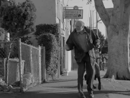 Pedigree Digital Ad -  The walk