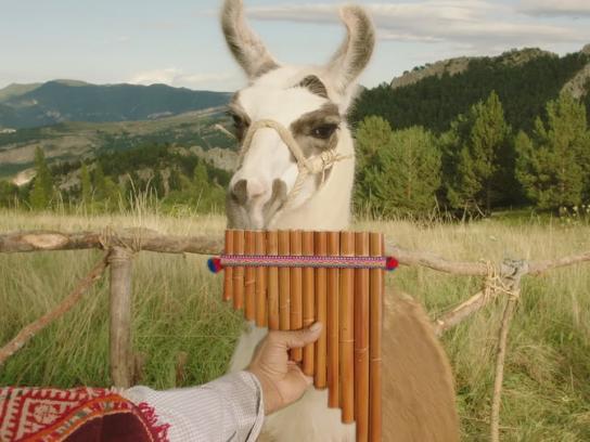Schneider Electric Film Ad -  Llama