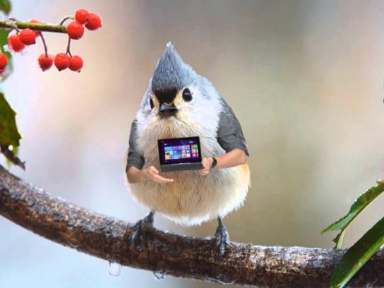 Asus Digital Ad -  Modern birds