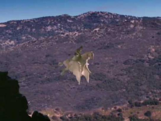 Minnesota Timberwolves Film Ad -  Pegasus