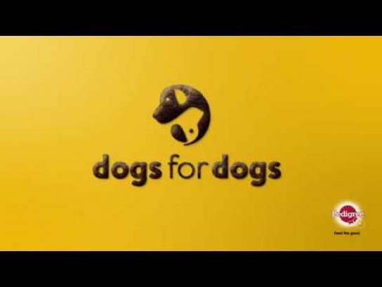 Pedigree Digital Ad - Dogs have dogs