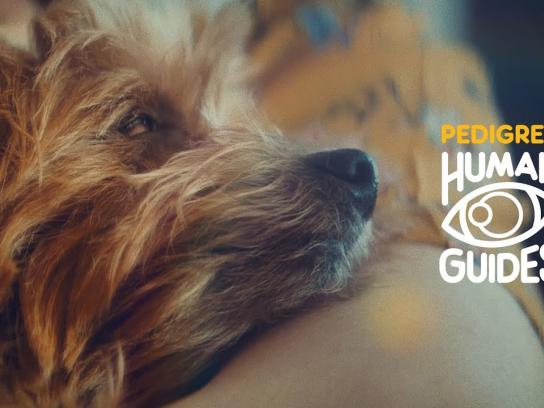 Pedigree Content Ad - Human Guides