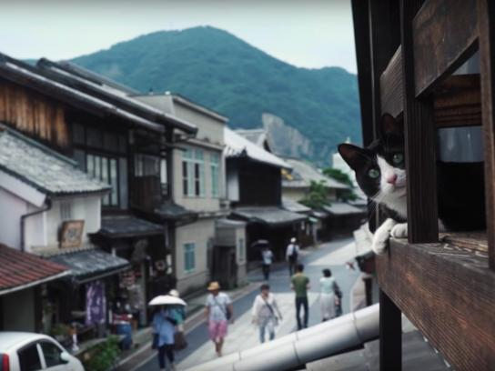 Hiroshima Tourism Board Digital Ad - Cat Street View, 2