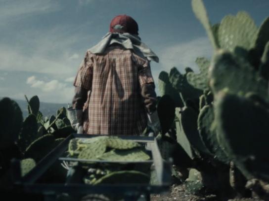 Save the Children Film Ad - Survivors