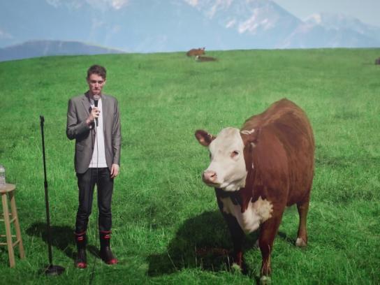 New Zealand Jerky Film Ad - Hooves