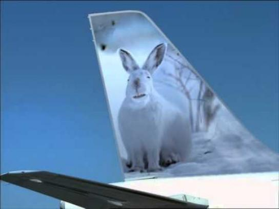 Frontier Airlines Film Ad -  Expanding