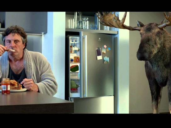 Laminex Film Ad -  Midnight and Moose